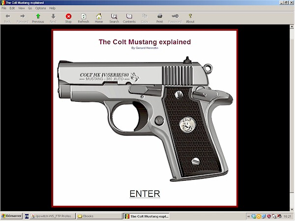 FN pistol